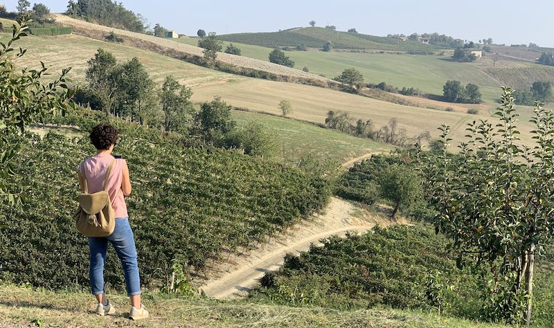 il_vino_donna